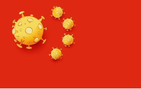 china Wuhan  coronavirus outbreak